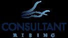 bluewater_advisory_sykesville_consultant-logo